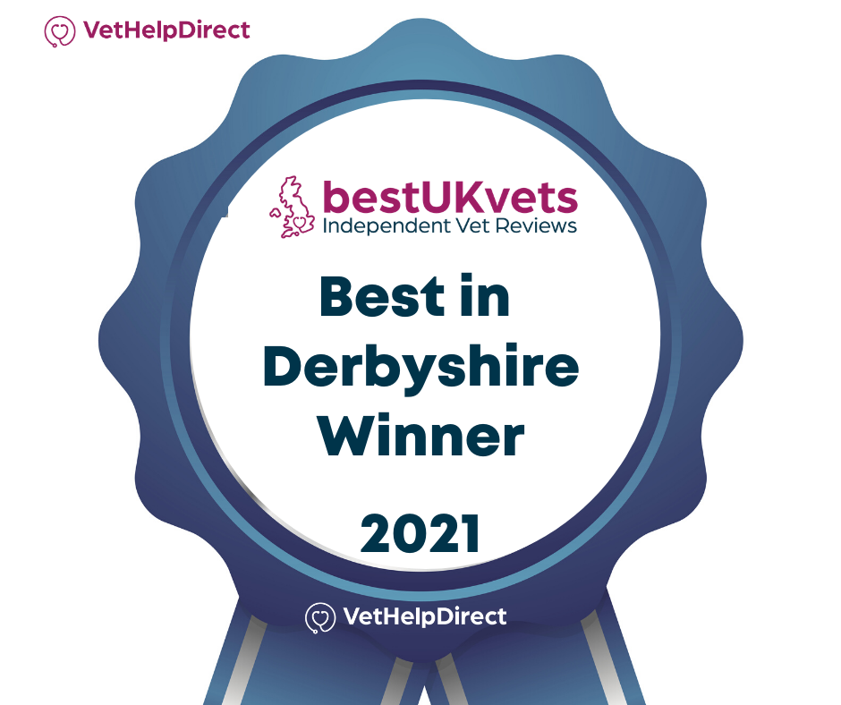 Best Vet In Derbyshire 2021
